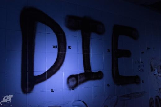 DSC_7523